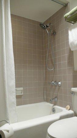 Desert Riviera Hotel : Bathroom VIP suite