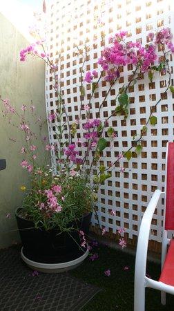 Desert Riviera Hotel : Private Patio/barbecue area VIP suite