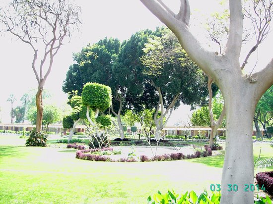 Jolie Ville Hotel & Spa - Kings Island, Luxor : grounds
