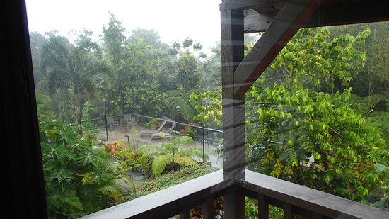 Rainforest Inn: from our bedroom looking out back in the courtyard area with the pretty japanese pond!