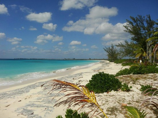 Club Med Columbus Isle : Plage de Christophe Colomb