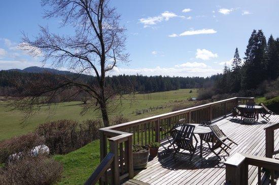 Turtleback Farm Inn: View from deck