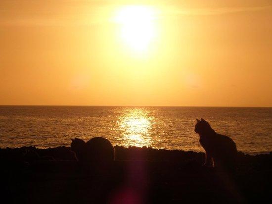 Sands Beach Resort : sunrise