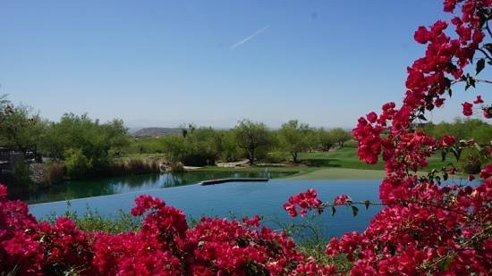 Loews Ventana Canyon Resort: a view of the golf course near the hotel entrance