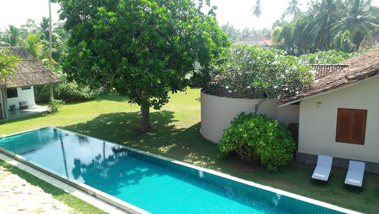 The Frangipani Tree by Edwards Collection : Hotel