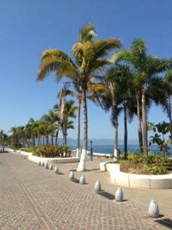 Costa Sur Resort & Spa: Malecon view_3