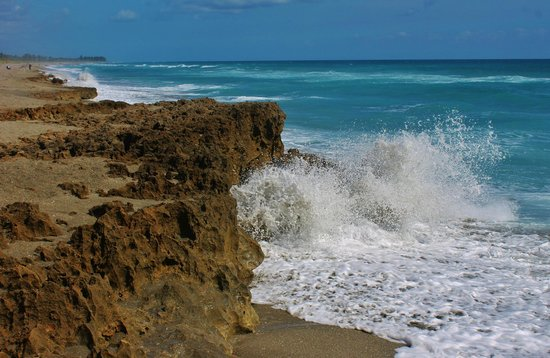 Blowing Rocks Preserve: An area just below the hole