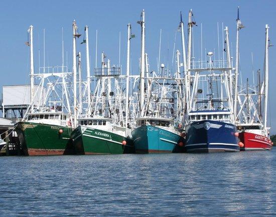 Periwinkle Inn : Harbor