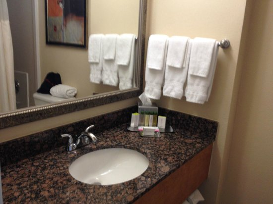 Doubletree Hotel Tallahassee: Deluxe King Room - Bathroom