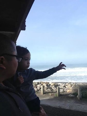 BEST WESTERN PLUS Lighthouse Hotel: My baby and I enjoying the full ocean view!!