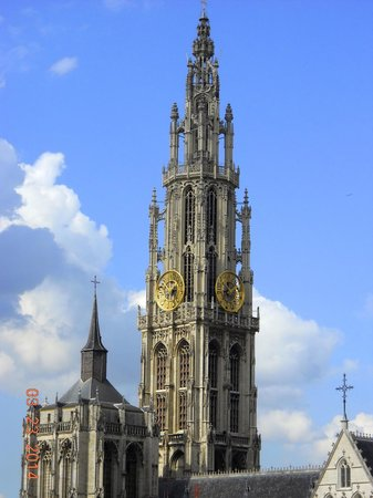 Hilton Antwerp Old Town: My view for the week: Cathedral of our Lady