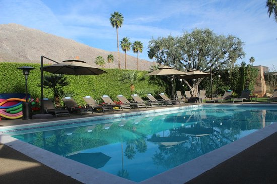 Desert Riviera Hotel : View poolside towards the mountainside
