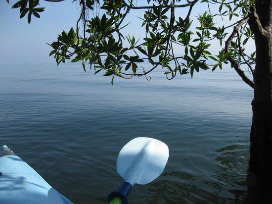 Cabinas Jimenez: Free use of kayaks and bikes