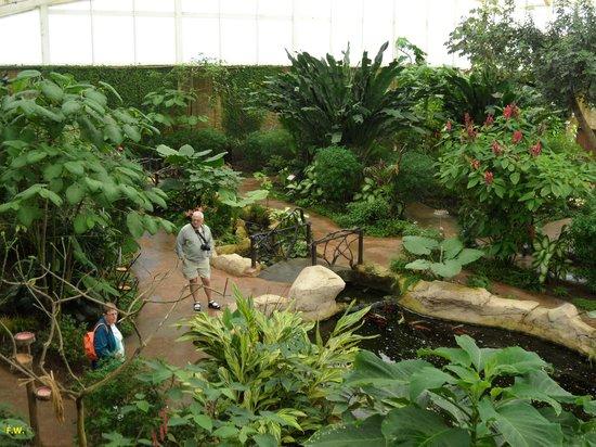 Butterfly Park of Benalmadena : Overzicht van de hal .