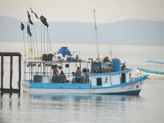Cabinas Jimenez: Boat on the Golfo Dulce
