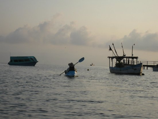 Cabinas Jimenez: Sunrise kayak through the harbor