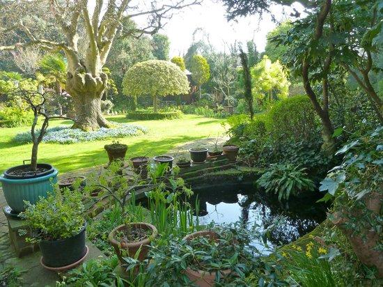 Ocklynge Manor Bed & Breakfast: Gardens