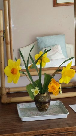 The Far Side Bed & Breakfast : flowers add a homely touch