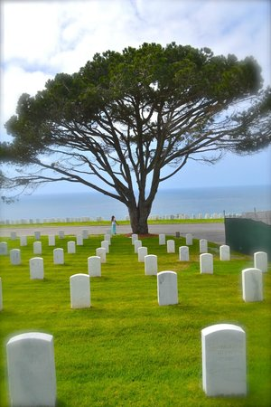 Fort Rosecrans Cemetery : March 2014