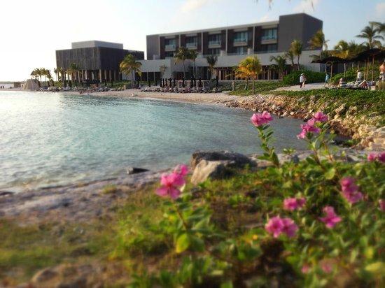 NIZUC Resort and Spa: Looking back at the hotel