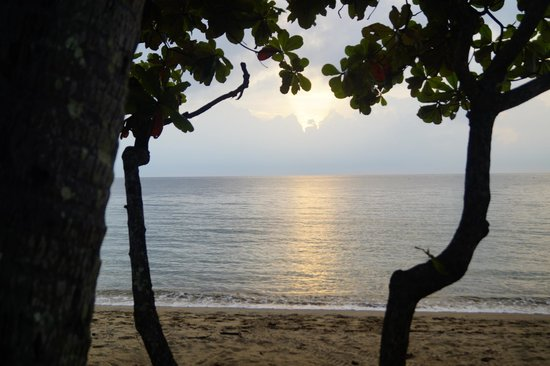 Alassio Palm Cove: Sunrise on the beach across the street