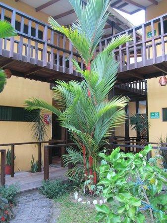 La Casa de las Flores Hotel : GIARDINO