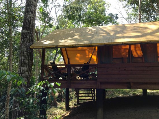 The Lodge at Chaa Creek : Another tent at Macal River Camp