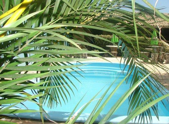 plantas jardim litoral : plantas jardim litoral: de um dos apartamentos – Picture of Pousada Jardim das Flores, Penha