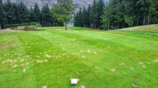 Queenstown Golf Club: #10 hole par 3, 109 mtrs