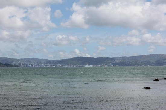 View of Wellington from Days Bay.