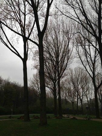 Amsterdamse Bos: Full of nature