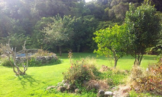 Wangapeka Backpackers - Atawhai Farmstay : Yard and bush in front of the house