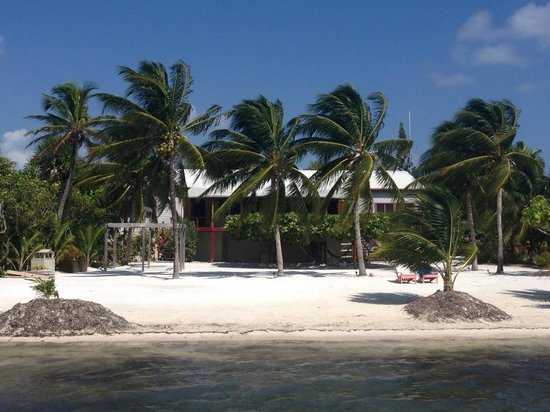 St. George's Caye Resort : The dining area/bar is the building behind the palm trees