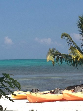 St. George's Caye Resort : Kayaks on the beach, lovely ocean colors