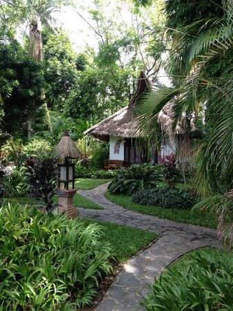 Atlantis Dive Resorts Dumaguete : the path that lead you throw the resort