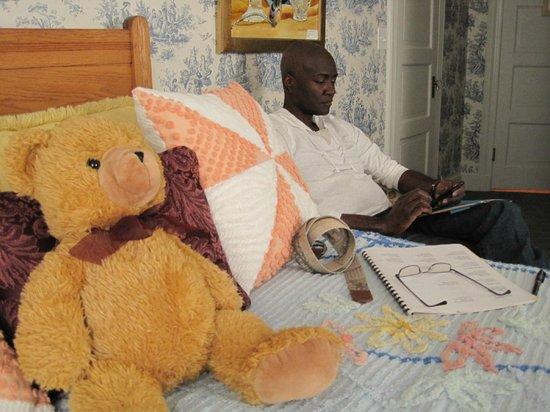 Main Street Manor Bed & Breakfast Inn: Teddy keeps an eye on Stan.