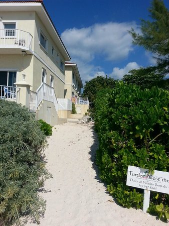 Turtle Nest Inn : view from the beach, the ocean view condos are the second building