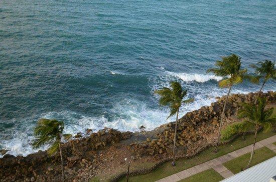 The Condado Plaza Hilton : Beach Area