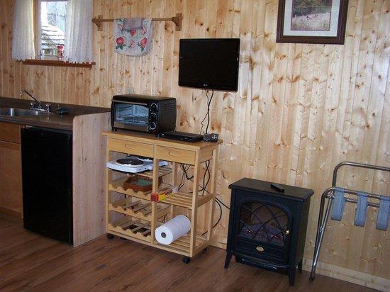 The Homestead Cabins: Cabin # 2