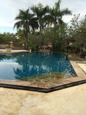 Aditya Beach Resort: Het zwembad