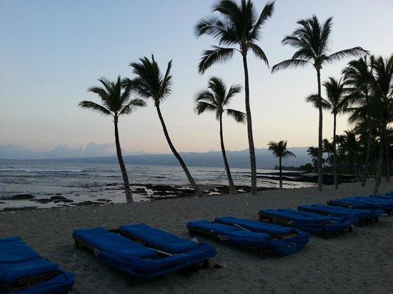 Mauna Lani Bay Hotel & Bungalows: Hawaiian Nights