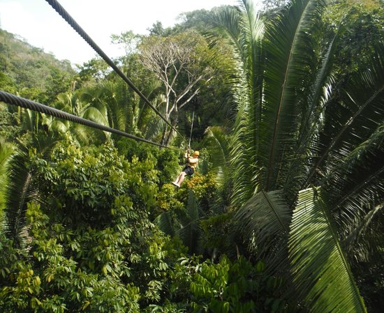 Cave Tubing R Us: Zip lining  through the jungle