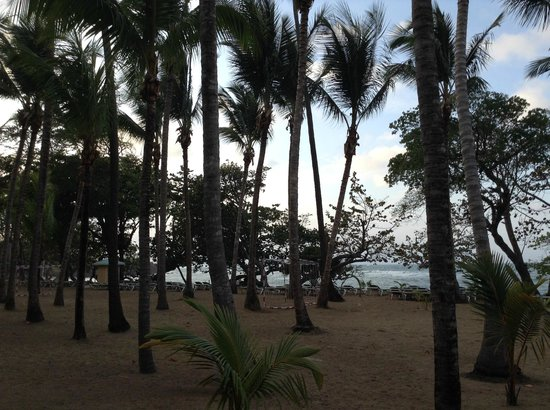 ClubHotel Riu Bachata : la plage