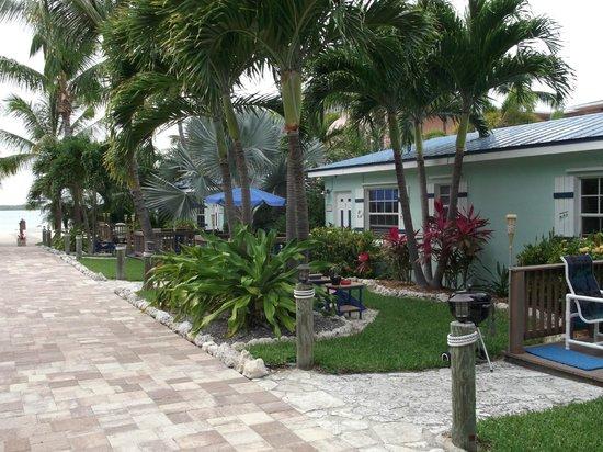 Island Bay Resort: Typical cottage