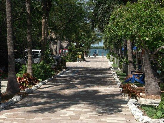 Island Bay Resort: Driveway