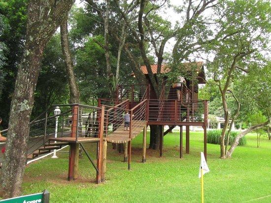 Bourbon Cataratas Convention & Spa Resort: Casa na árvore