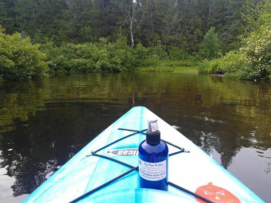 Walloon Lake, MI: Paddling down the Bear River