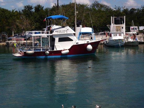 We B Divin' Cozumel: We B Divin Boat