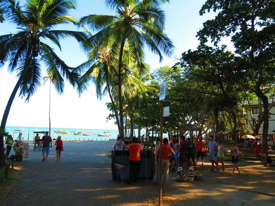 Hotel Eco Atlântico: Caminho Para Praia