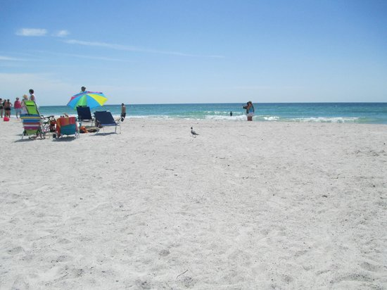 Coquina Beach : nice sand,no crowds,great beach